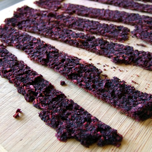 how to cook beef jerky in a dehydrator